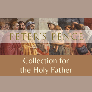 2020 Peter's Pence Collection