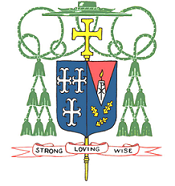 From Bishop Tobin: The Apostolic Letter, Traditionis Custodes
