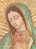 La Virgen de Guadalupe: Empress of the Americas