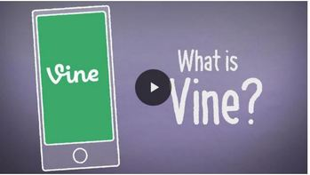 What should parents know about VINE?