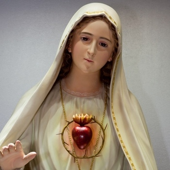 Diocese to be Consecrated to Immaculate Heart of Mary