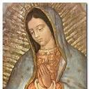 Our Lady of Guadalupe Feast Day Spanish Mass & Reception