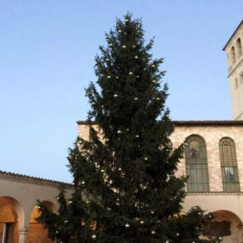 The Pilgrimage Continues to Assisi