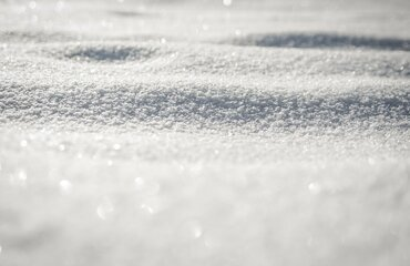 Cancellations for February 16