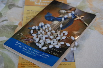 A daily novena in preparation for the Feast Day of Our Lady of Fatima