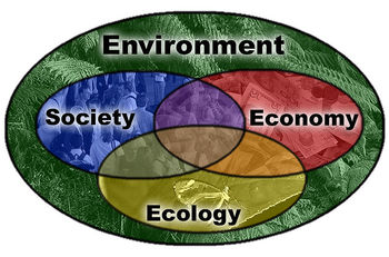 Thinking and Praying with Pope Francis - Workshop 6 - Integral Ecology Part 2/2