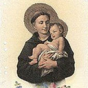 Weekly Novena to our Patron, St. Anthony of Padua
