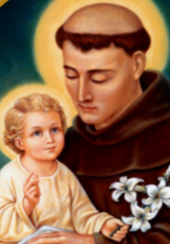 Feast of St. Anthony of Padua Mass & Celebration