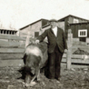 ARCHIVES: HOG FARM AND SUBIACO SAUSAGE
