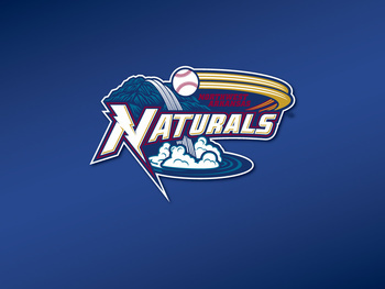 EVENT: AR Natural Baseball Game