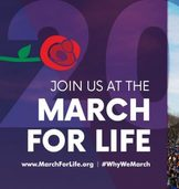 Youth Ministry-March for Life Trip to Washington DC