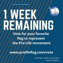 Vote to choose a Pro-Life Flag!