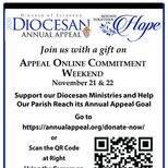 2020 Diocesan Annual Appeal